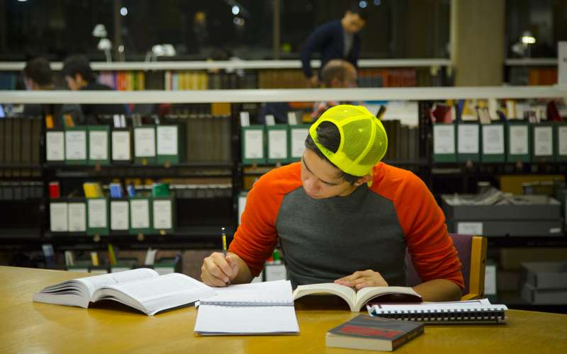 A student studies in the library